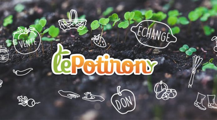 le-potiron-troc-echange-vente-jardin-legumes-fruits